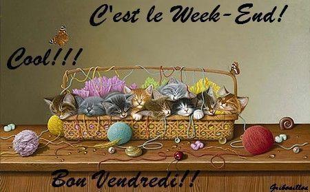 Image du Blog chezcoccinelle.centerblog.net